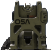 ARX-160 iron sights CoDG