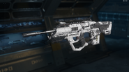 XR-2 Gunsmith Model Battle Camouflage BO3