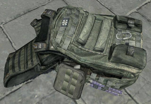File:Ballistic-Vest-Deployed MW3.png