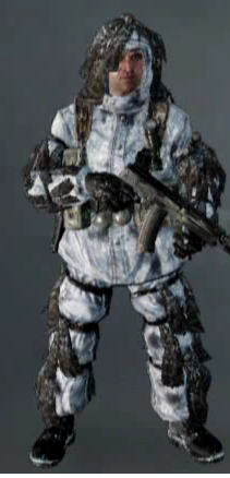 File:Arctic BO Ghost.png