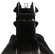 Ameli iron sights CoDG
