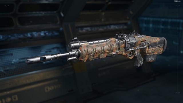 File:Sheiva Gunsmith Model Flectarn Camouflage BO3.png