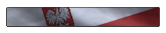 File:Poland flag title MW2.png