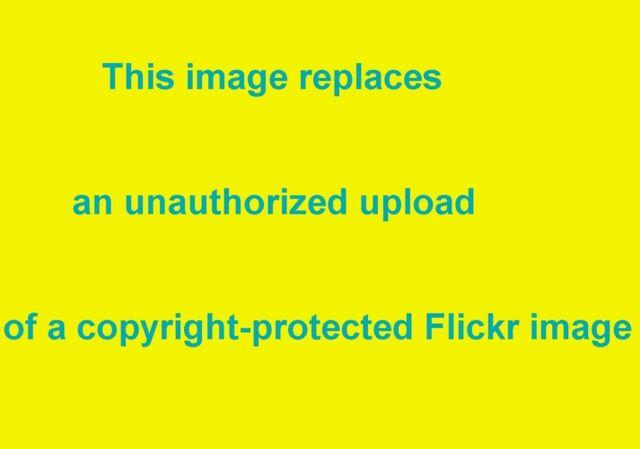 File:Unauthorized upload.jpg