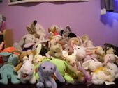 My stuffed animal rabbits collection by bunny lover14-d5e5x9l
