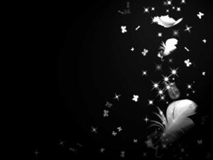 Galaxy-feathers-black-white