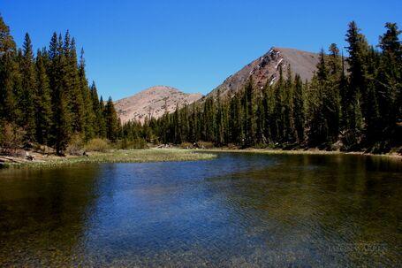 Mountain-Pond
