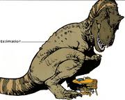 Tyrannosaurus 9
