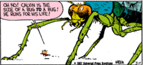 Calvin In Twofold Insect-Size Form