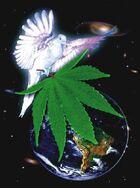 Dove cannabis earth 4
