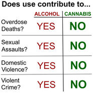 Alcohol versus cannabis