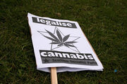 Glasgow Legalise Cannabis