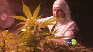 Merced cannabis nun