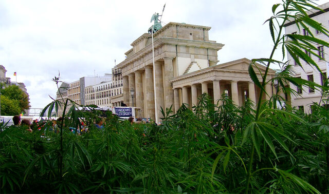 File:Hanf-am-brandenburger-tor - hanfparade2006 - photo iwashere.jpg