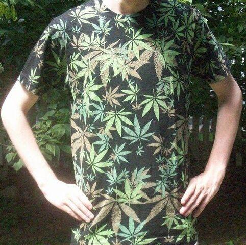 File:Promo shirt shot.jpg