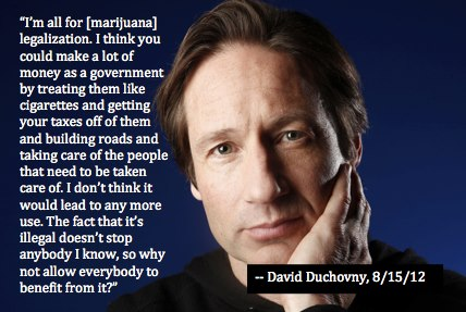 David Duchovny on cannabis legalization