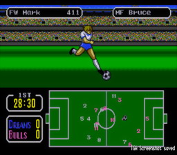 Tecmo Cup Football Game (SMD) IMG03