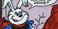 Haywood the Hailstone Hare