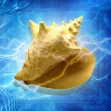 Poseidons Horn