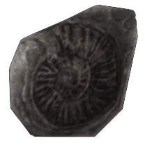File:Immortal Fragment.png