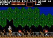 NES Stage 1
