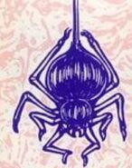 BR Spider