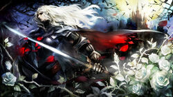 Dragon's Crown - Vampire Hunter - 01