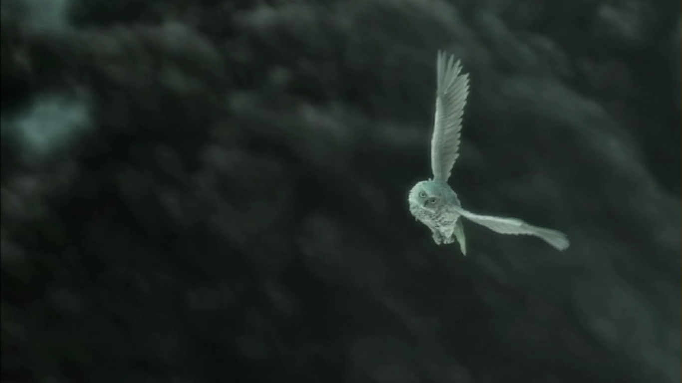 File:Judgment Intro 17 - Owl Takes Off.JPG
