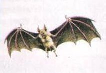File:NES Game Atlas Bat.JPG