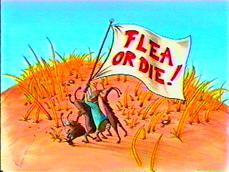 File:Flea.jpg