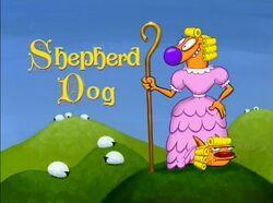 ShepherdDog