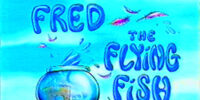 Fred the Flying Fish