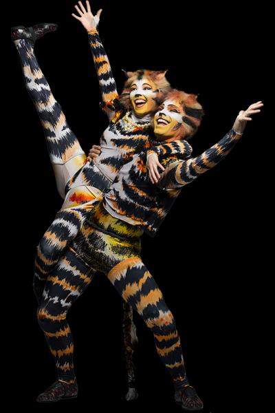 Cats the musical - Pinterest
