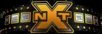 NXT Championship-2-