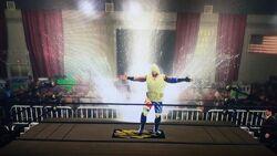 Omega Champion