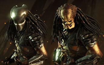 Masked and Unmasked Predator