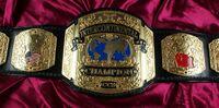 EDF New Breed Championship