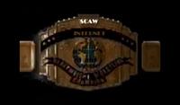 SCAW Internet Championship V2