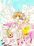 CCS 20th vol 1 full illustration