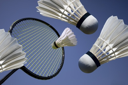 File:Badminton.jpg