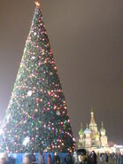 Christmas night Moscow 033