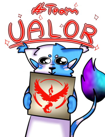 File:Team VALOR.png