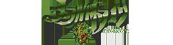 File:Emerald Dragon Wiki Wordmark.png