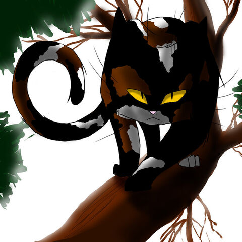 File:Warrior cats sol by whiteflamesoul.jpg