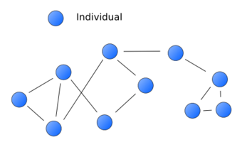 File:Network.png