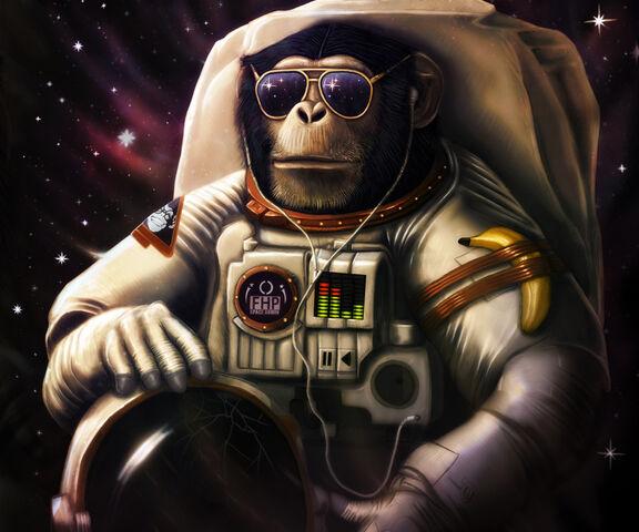 File:Space Chimp-wallpaper-10890459.jpg