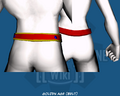 Golden Age (Belt) - Back
