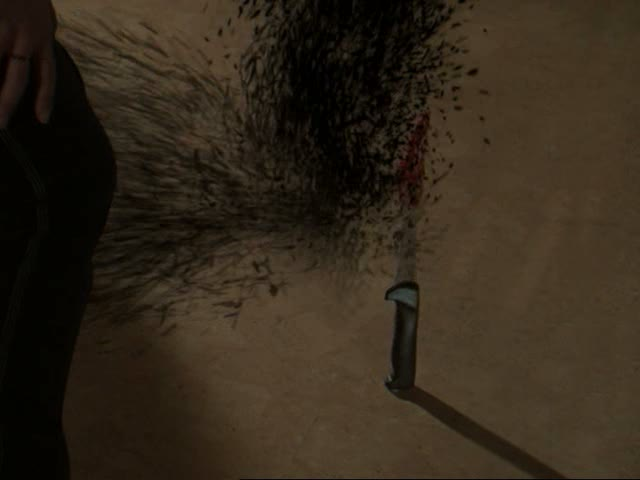 File:Shadow's fifth death.jpg