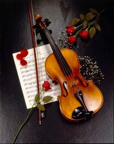 File:Violino.jpg