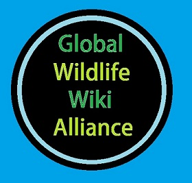 File:Global Wildlife Wiki Alliance.jpg